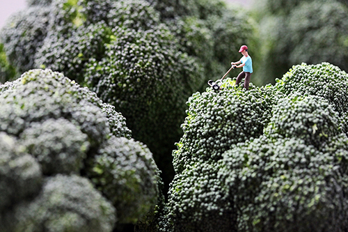 Boffoli-big-appetites-photo-series-broccoli-mower-food-art-nourriture-rocket-lulu