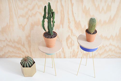 Diy-cactus-heju-tripod-rocket-lulu
